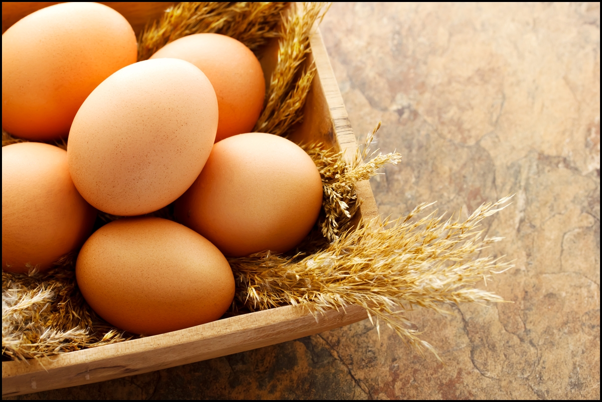 ज्यादा धुप अंडे को ज्यादा अच्छा बनाता है !