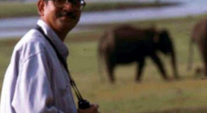 ELEPHANTS LOVER: RAMAN SUKUMAR