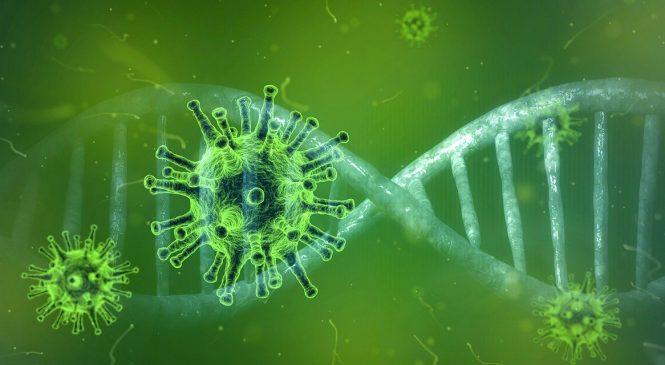 Delta Plus: A New Variant Of Corona Virus