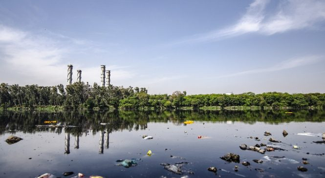 Water Pollution Can Cause Cancer